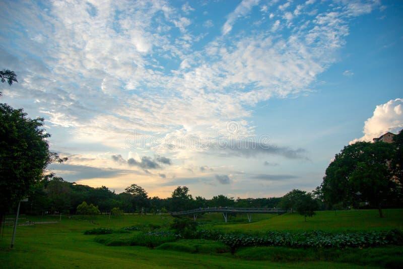 Uma opinião do parque do céu azul fotos de stock