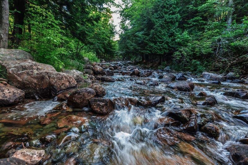 Uma paisagem bonita da natureza fotos de stock royalty free