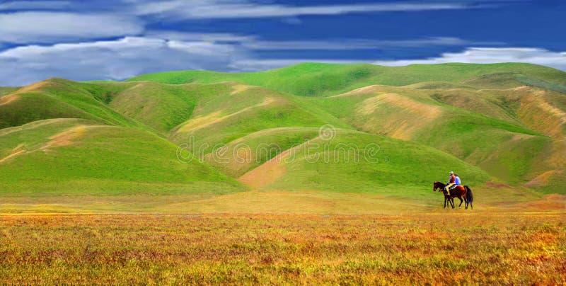 Uma paisagem bonita de Califonia de campos e de vallleys abertos imagens de stock
