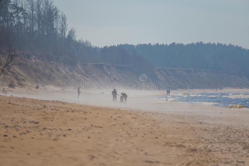 Uma paisagem bonita em um dia ventoso, areia de sopro da praia do vento até os penhascos arenosos altos Cenário da mola no mar imagem de stock royalty free
