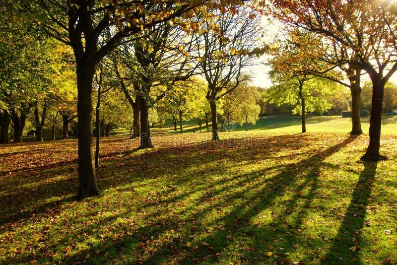 Uma paisagem colorida do outono imagem de stock