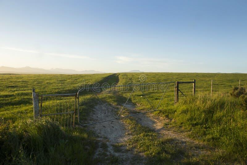 Uma paisagem de um campo gramíneo com a estrada do cascalho que conduz no horizonte fotos de stock