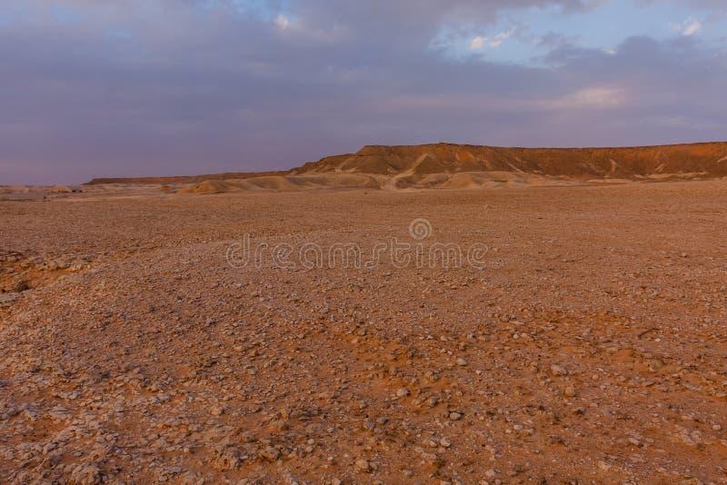 Uma paisagem do deserto ao sudeste de Riyadh, Ar?bia Saudita imagem de stock royalty free