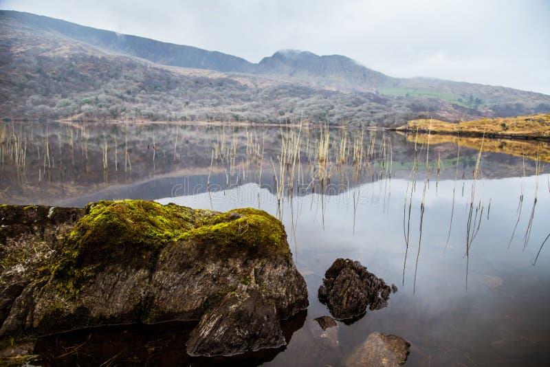 Uma paisagem irlandesa bonita da montanha com um lago na mola imagem de stock