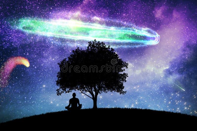 Uma paisagem mágica da noite com árvore e o céu estrelado ilustração stock