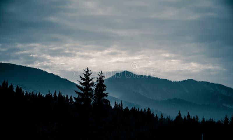Uma paisagem monocromática bonita, abstrata da montanha na tonalidade azul imagens de stock