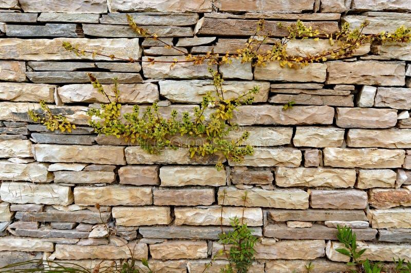 Uma parede de pedra seca moderna imagens de stock royalty free