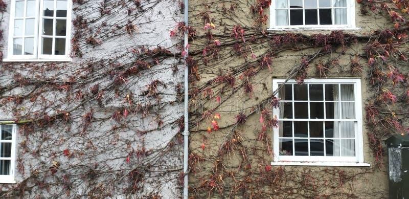 Uma parede engraçada na rua de Oxford fotografia de stock royalty free