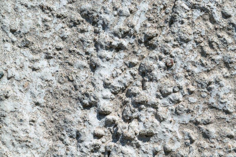 Uma parte de muro de cimento com seixos e listras foto de stock royalty free