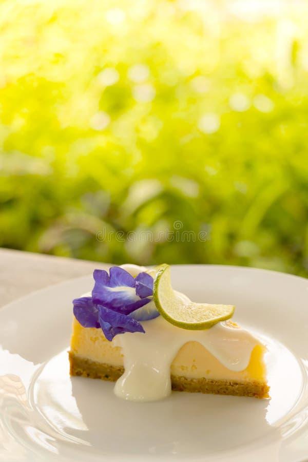 Uma parte de torta deliciosa do queijo do limão na placa branca com fundo verde do jardim imagem de stock