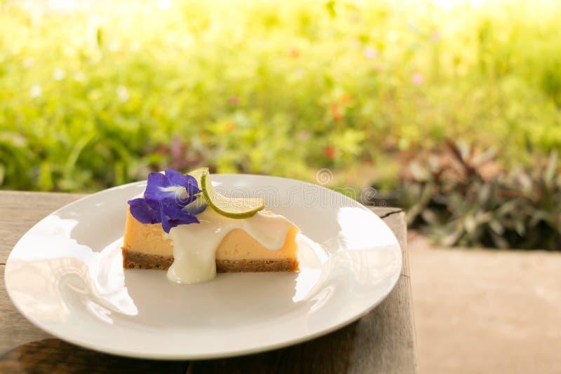 Uma parte de torta deliciosa do queijo do limão na placa branca com fundo verde do jardim fotos de stock royalty free