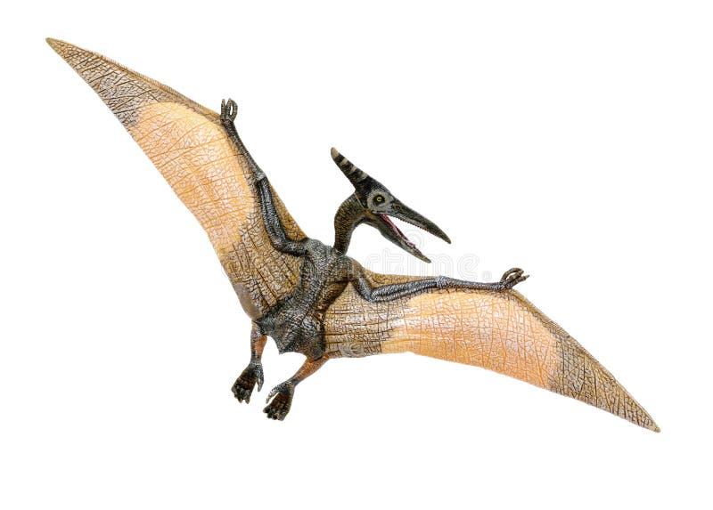 Uma parte dianteira vermelha e amarela pequena do brinquedo do pterodátilo e para trás vista a sua esquerda fotografia de stock royalty free