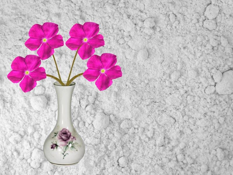 Vaso bonito contra a decoração branca de pedra da casa do fundo fotografia de stock royalty free