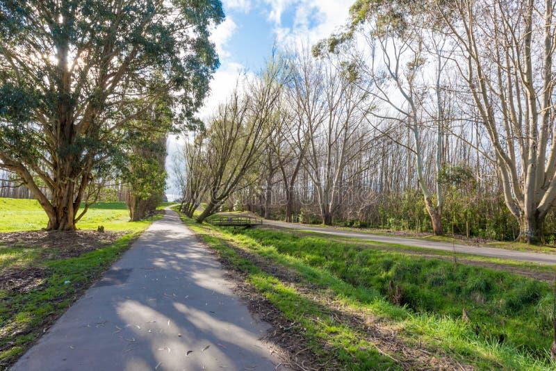 Uma passagem através de um parque em Palmerston Nova Zelândia norte fotos de stock