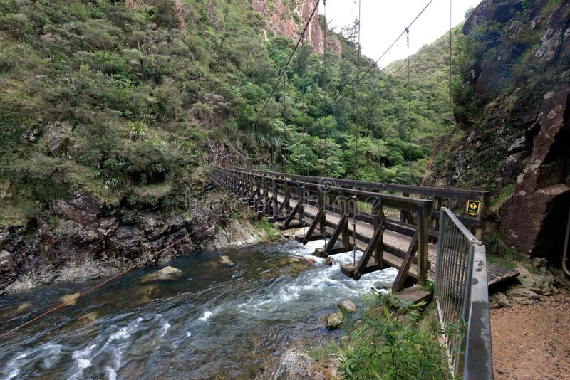 Uma passagem de madeira suspendida através do rio de Ohinemuri fotografia de stock