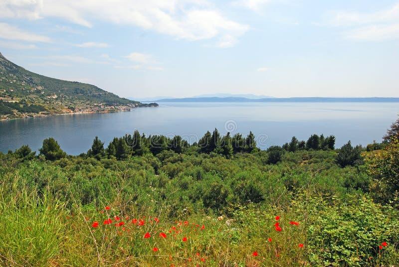 Uma península na costa da Croácia imagem de stock royalty free