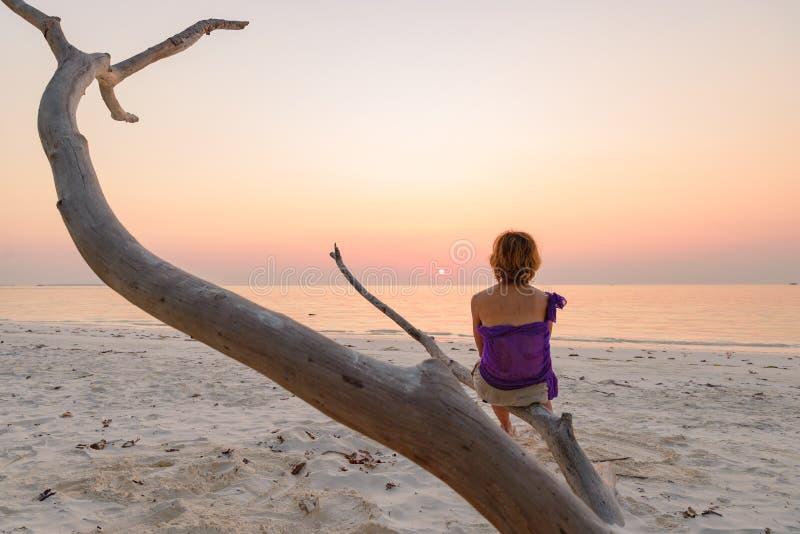 Uma pessoa que senta-se no c?u rom?ntico no por do sol, silhueta da praia da areia do ramo da vista traseira, luz solar dourada,  imagem de stock royalty free
