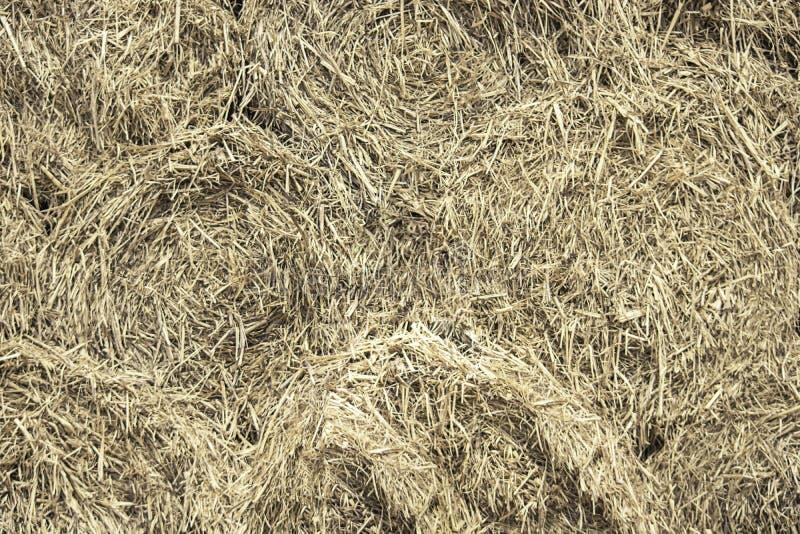 Uma pilha da palha empilhada usada como um fundo fotografia de stock royalty free