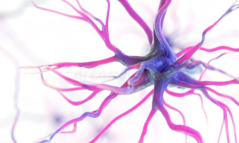 Uma pilha de nervo humana ilustração do vetor