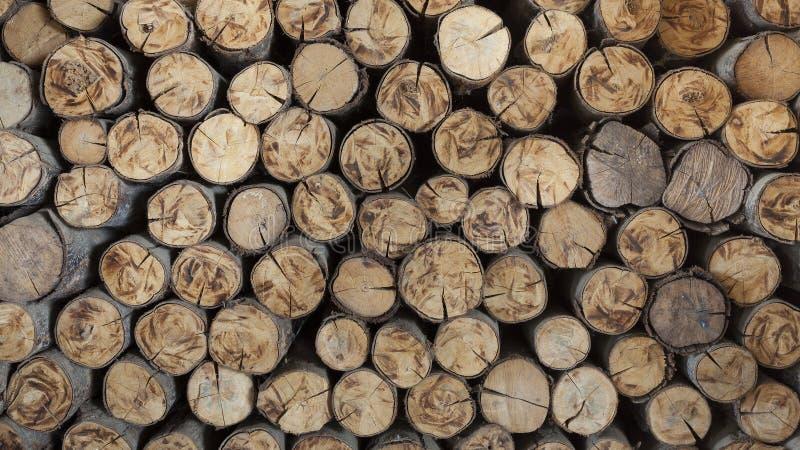 Uma pilha dos troncos de árvore cortados que dão uma ideia agradável do y concêntrico imagem de stock