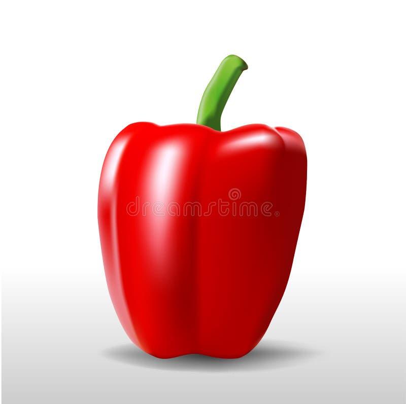 Uma pimenta vermelha ilustração do vetor