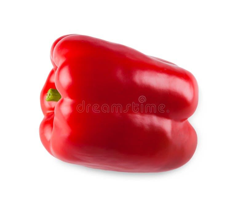 Uma pimenta vermelha fresca madura isolada no fundo branco imagens de stock royalty free