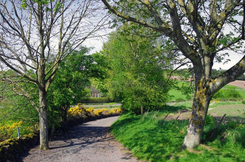 Uma pista do país em Perthshire, Escócia imagem de stock