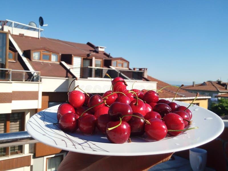 Uma placa com as cerejas vermelhas contra o céu azul, café da manhã em um balco fotografia de stock royalty free