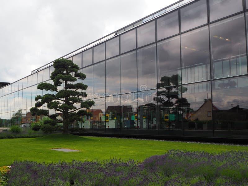 Uma planta moderna de acordo com exigências ecológicas fotos de stock royalty free