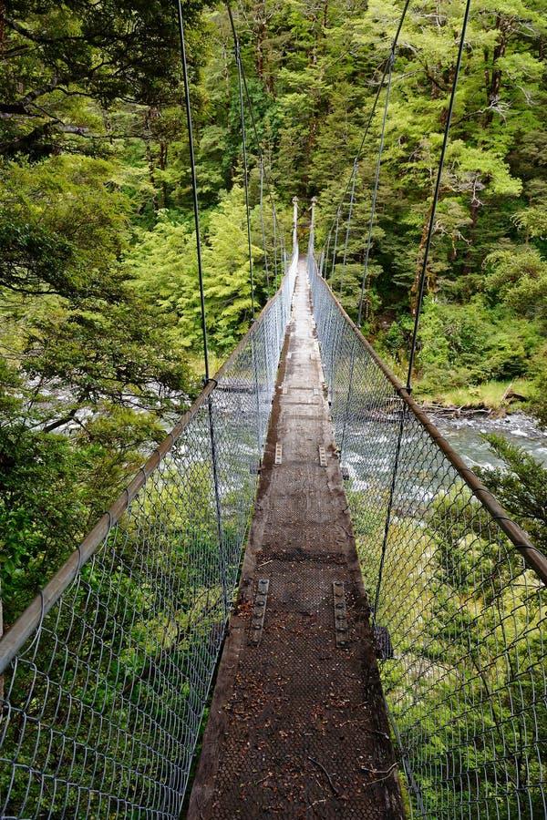 Uma ponte de balanço sobre o desfiladeiro do canibal no St James Walkway que caminha a trilha em Nova Zelândia fotos de stock
