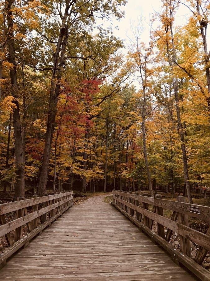 Uma ponte de madeira nova em Parma, Ohio - EUA - OHIO imagens de stock