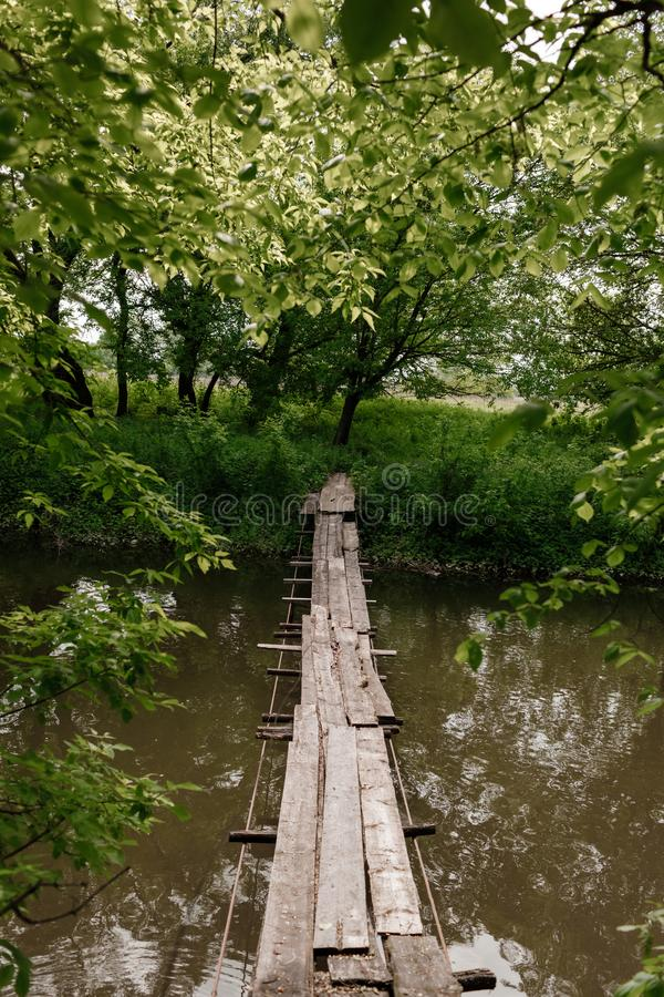 Uma ponte de madeira pequena sobre um córrego suave em um parque verde foto de stock