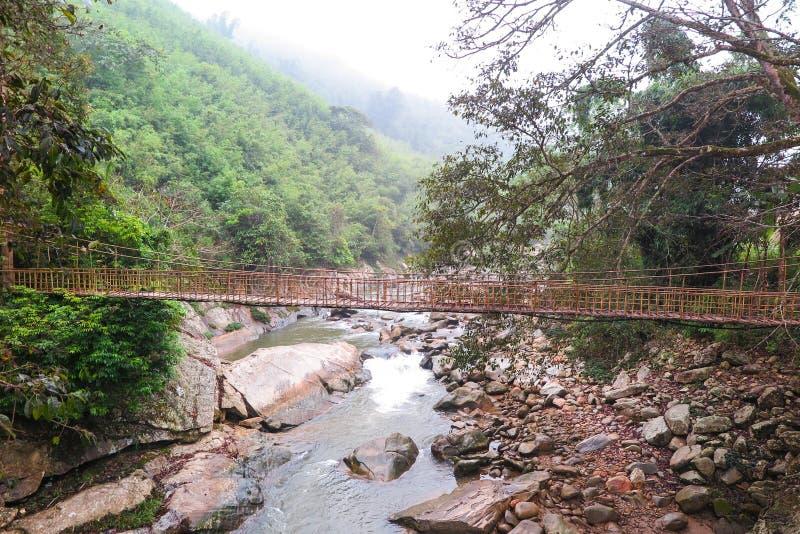 Uma ponte de madeira sobre um córrego em Sapa, Vietname imagem de stock