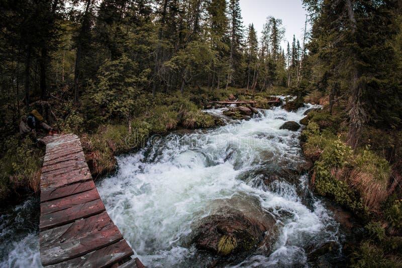 Uma ponte de madeira sobre um córrego rápido da montanha na floresta boreal de Taiga fotografia de stock royalty free