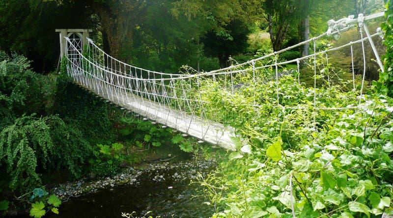 Uma ponte de suspensão sobre um rio no mais forrest fotos de stock