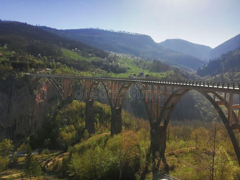 Uma ponte no rio de Tara fotos de stock