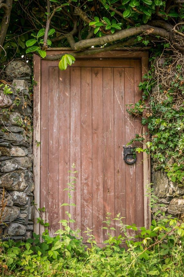 Uma porta de madeira velha imagens de stock