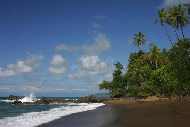 Uma praia do Oceano Pacífico imagem de stock