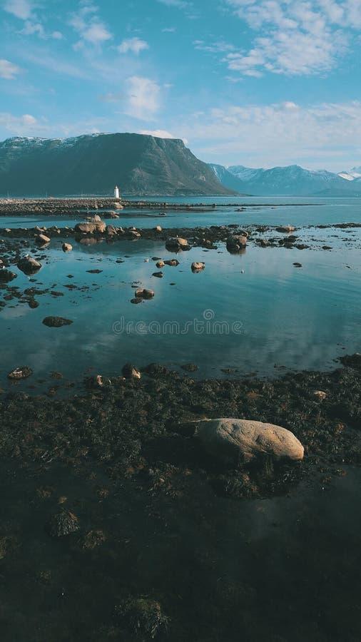 Uma praia rochoso coberta com a alga, vista do farol em Noruega fotografia de stock