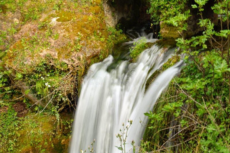 Uma queda da água em um parque natural imagem de stock royalty free