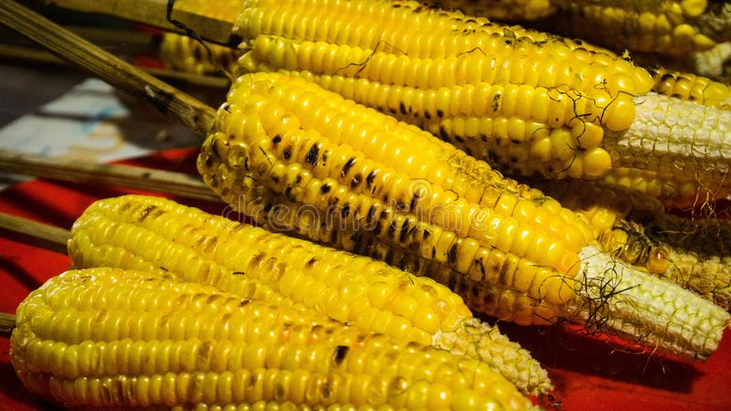 Uma queimadura ou um milho grelhado ou roasted com alimento amarelo da rua da cor fotografia de stock