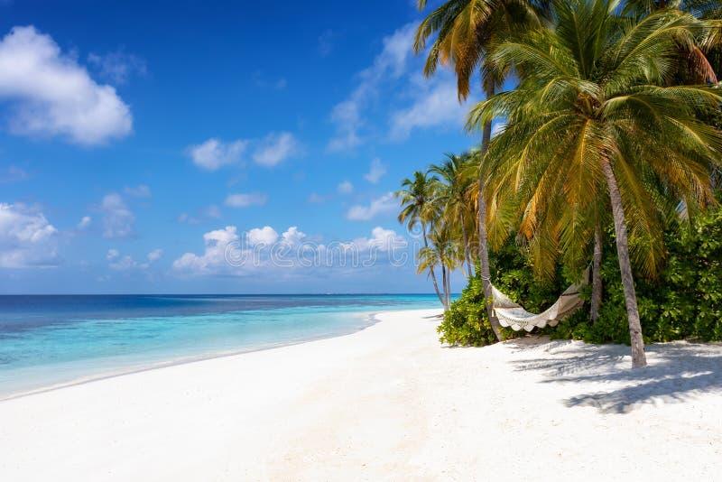 Uma rede vazia em uma praia do paraíso em Maldivas fotos de stock