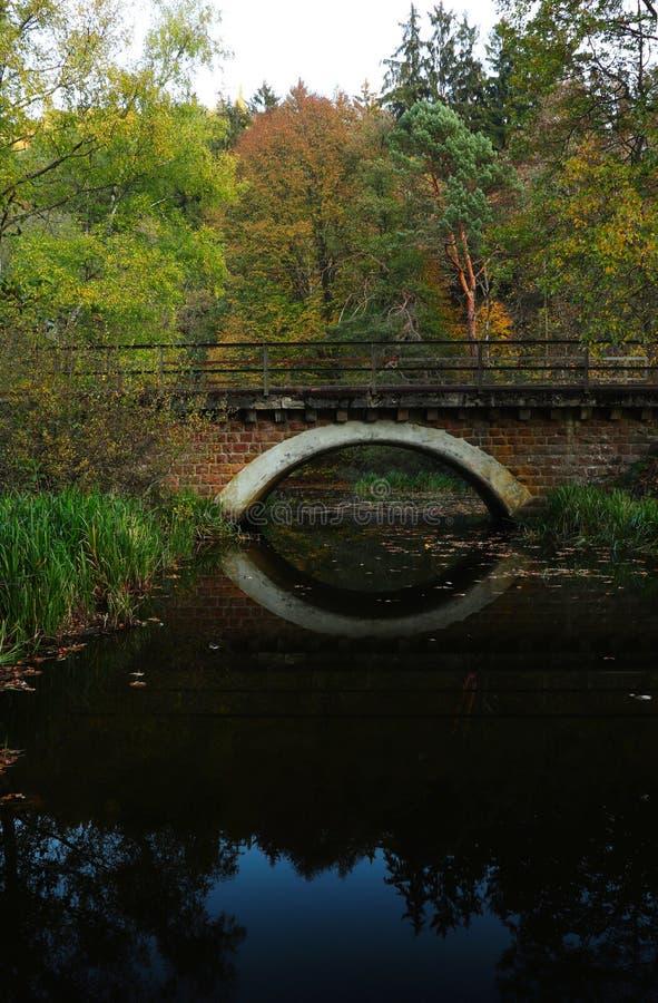 Uma reflexão de uma ponte no outono em Alemanha imagem de stock royalty free
