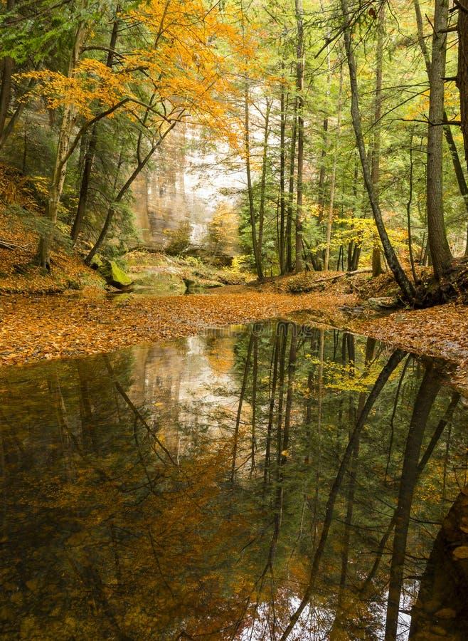 Uma reflexão feliz no parque estadual dos montes de Hocking imagem de stock royalty free