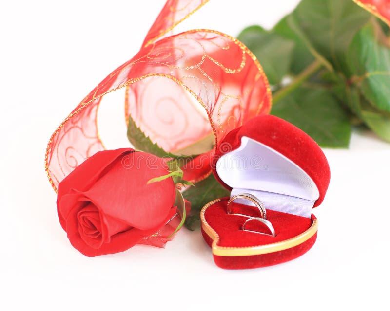 Uma rosa e uma caixa com anéis fotografia de stock