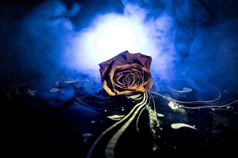 Uma rosa murchando significa amor perdido, divórcio, ou um relacionamento mau, mortos aumentou no fundo escuro com fumo imagem de stock