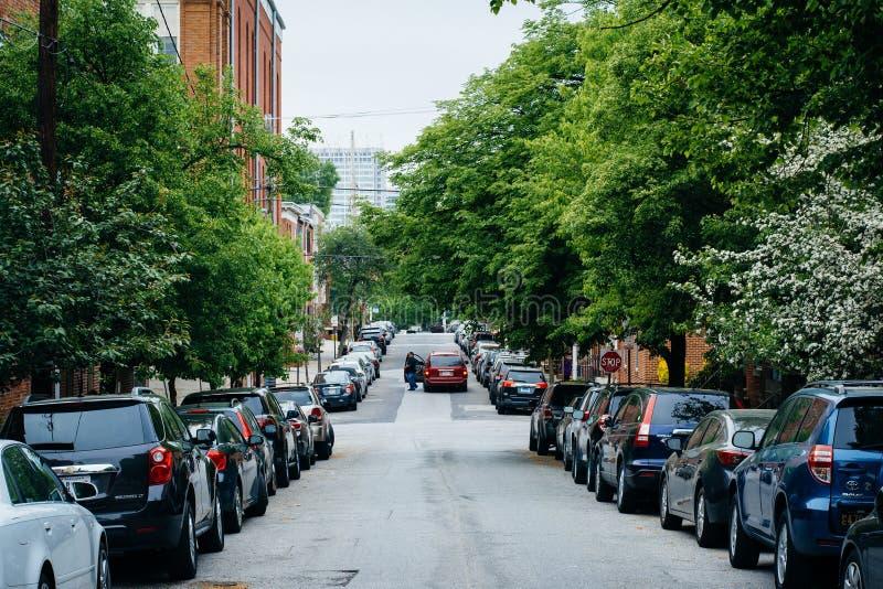 Uma rua árvore-alinhada no monte federal, Baltimore, Maryland fotografia de stock royalty free