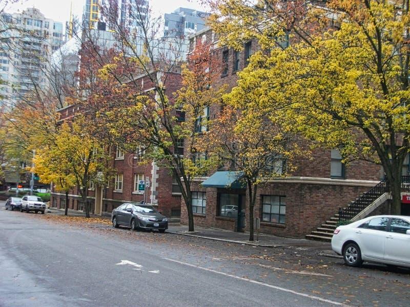 uma rua no outono com árvores imagem de stock
