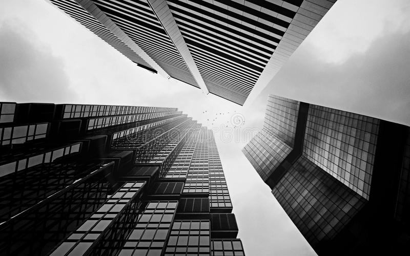 Uma série de arranha-céus em um dia nebuloso fotos de stock royalty free