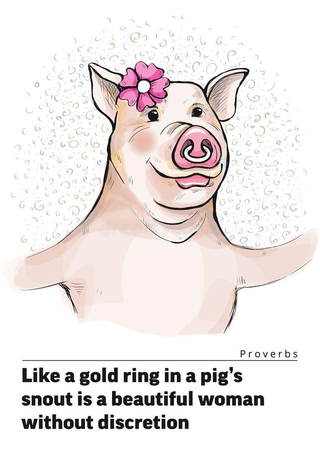 Uma série de cartão com um leitão Provérbio e provérbios Como um anel de ouro no porco s um focinho é uma mulher bonita sem discr ilustração do vetor